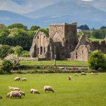 10 เหตุผลที่ว่า ทำไมประเทศไอร์แลนด์ จึงเป็นสถานที่เหมาะสมที่สุด กับการไปเรียนภาษา…
