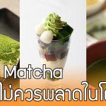 7 ขนมและของหวานที่ทำมาจาก Matcha ต้นตำหรับจากโตเกียว ที่คุณต้องไม่พลาด!!
