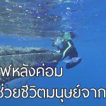 เรื่องราวสุดประทับใจ เมื่อเจ้าวาฬใจดี ช่วยชีวิตมนุษย์ จากการถูกฉลามทำร้าย!!