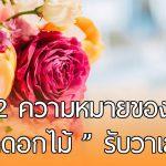 ไม่ได้มีแค่กุหลาบ… รู้จักดอกไม้ 12 ชนิดที่นิยมในวันวาเลนไทน์ สร้างความประทับใจให้คนพิเศษ