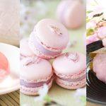 รวมพิกัด 9 ของกินจากดอกซากุระแสนอร่อย ที่คนไปญี่ปุ่นต้องไม่พลาด ตามเก็บให้ครบ!!