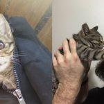 """เรื่องราวสุดซึ้งระหว่าง """"ลูกแมวตาเดียว"""" ที่ใกล้สิ้นใจ กับชายผู้ให้ชีวิตใหม่อีกครั้ง…"""