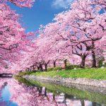 โครงการชิงทุน UNESCO-Japan  ด้านการศึกษาเพื่อการพัฒนาที่ยั่งยืน 2018