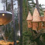 10 ที่พักบ้านต้นไม้สุดเจ๋งจากทั่วโลก สายรักธรรมชาติไม่ควรพลาด ต้องไปให้ได้สักครั้ง!!